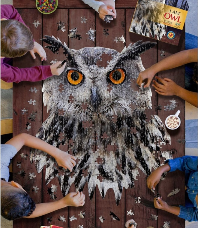 Poster Size Owl Puzzle
