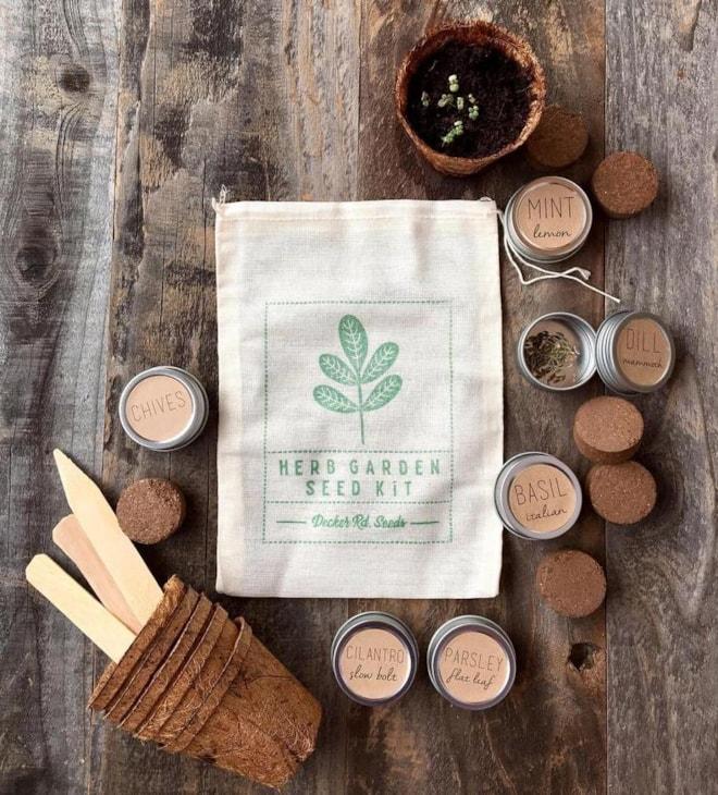Herb Garden Seed Kit