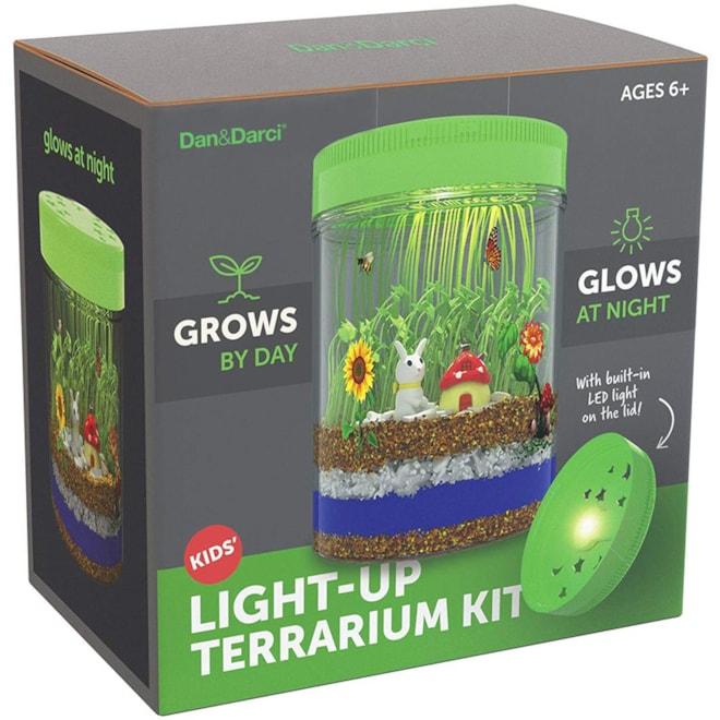 Light-up Terrarium Kit for Kids