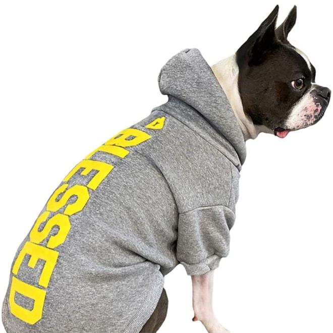 House Doggie Hoodie