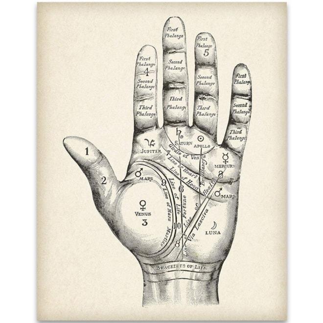 Vintage Palm Reading Chart - 11x14 Unframed Art Print