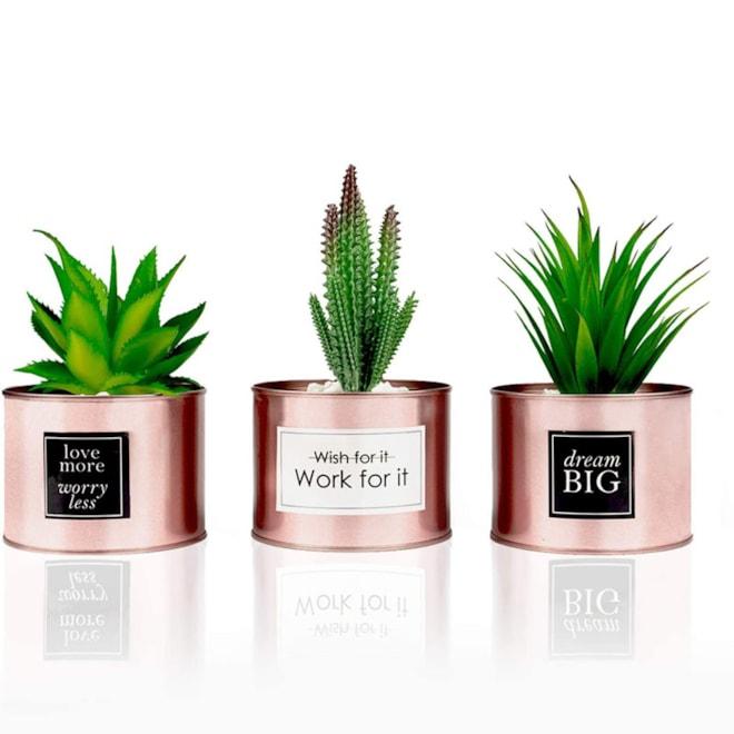 Rose Gold Desk Plants