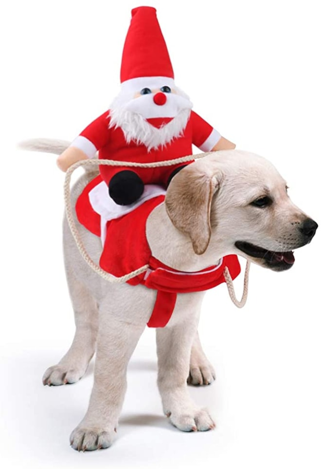 Santa Riding Dog Christmas Costume