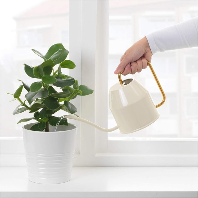 Watering Can Ivory & Gold