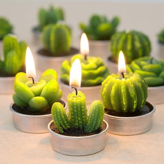 Succulent Tealight Candles