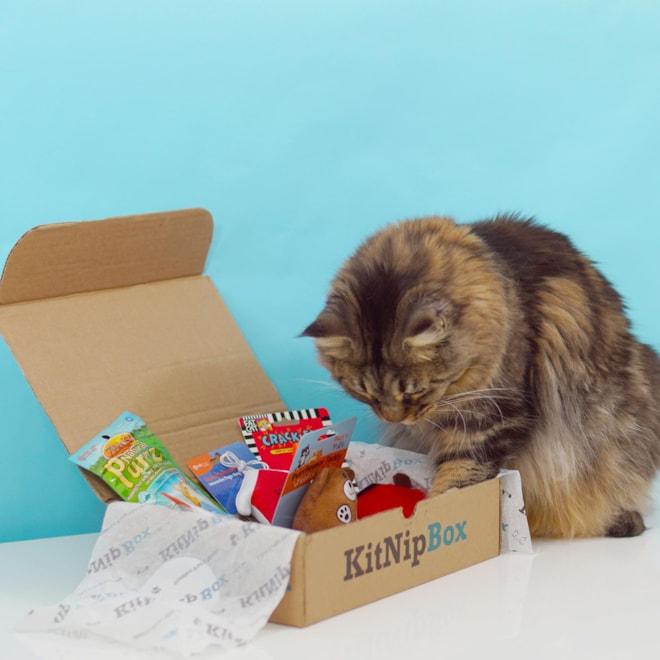 Happy Cat KitNipBox  Subscription Box