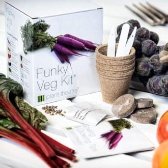 Funky Veg Kit Plant Kit